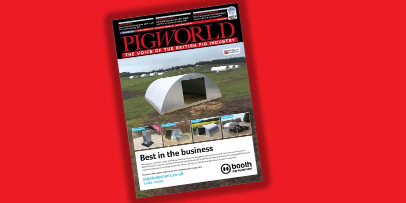 PigWorld
