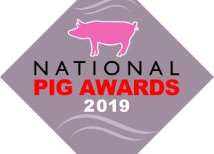 grey pig award logo 2017 open fonts